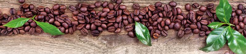 Kopfgrafik Kaffee Sahne